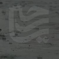 فوتیج باران